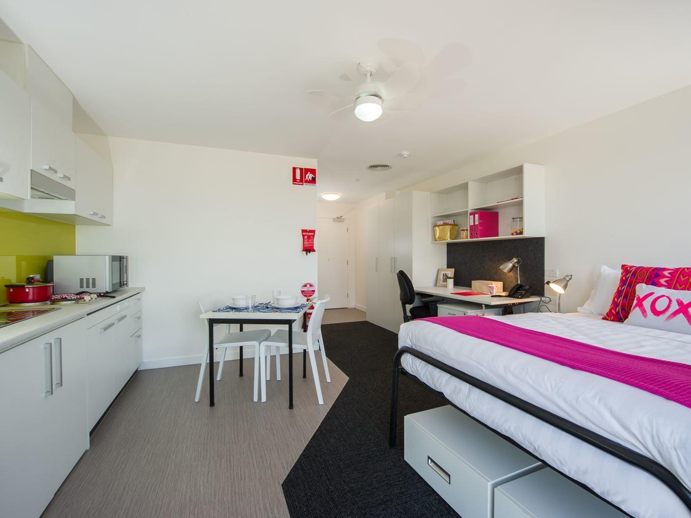 Studio Accessible/Queen Apartment