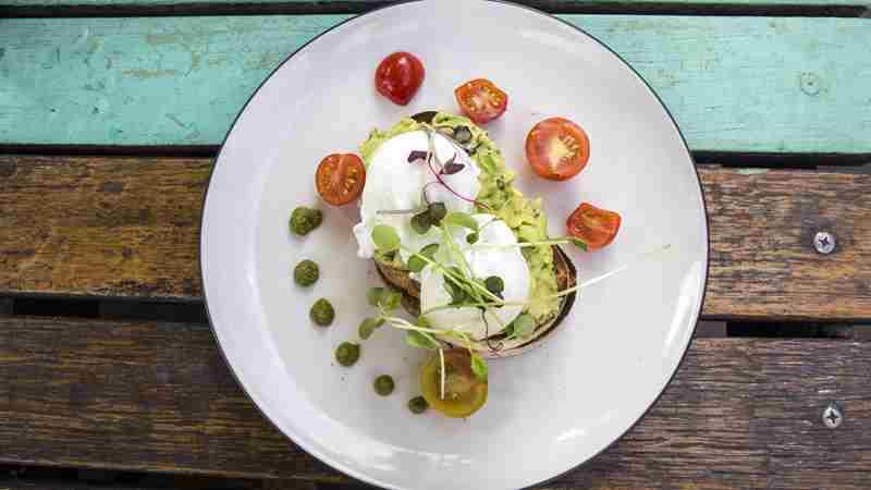 Best Smashed Avocado