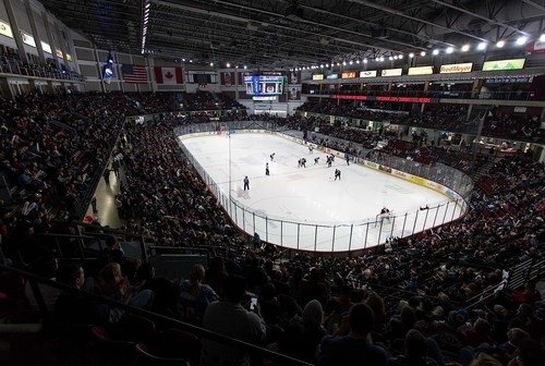 a crowd watches an indoor ice hockey game