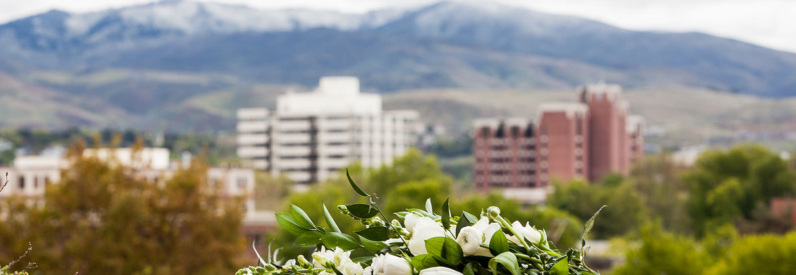 a bride's bouquet with downtown Boise and foothills in the background