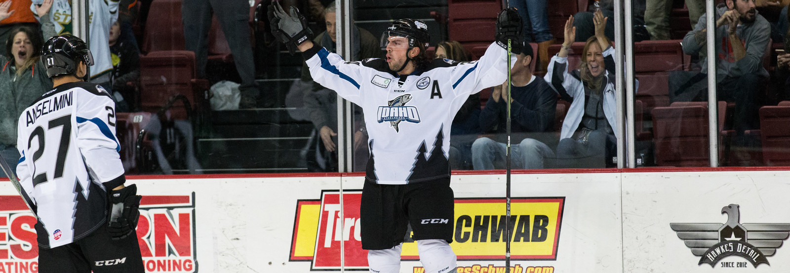 a hockey player raising their hands