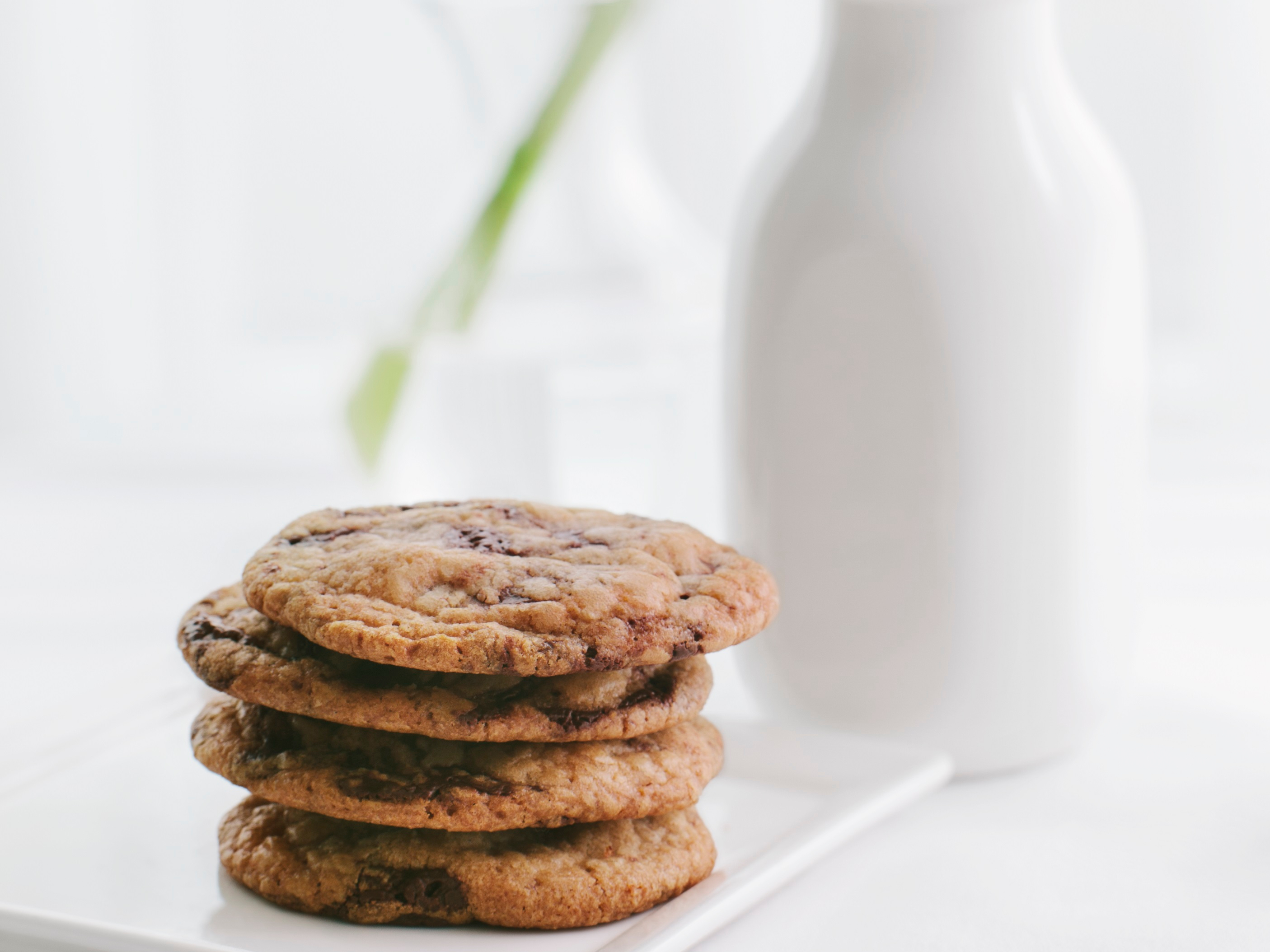 Milk, cookies, and a tulip