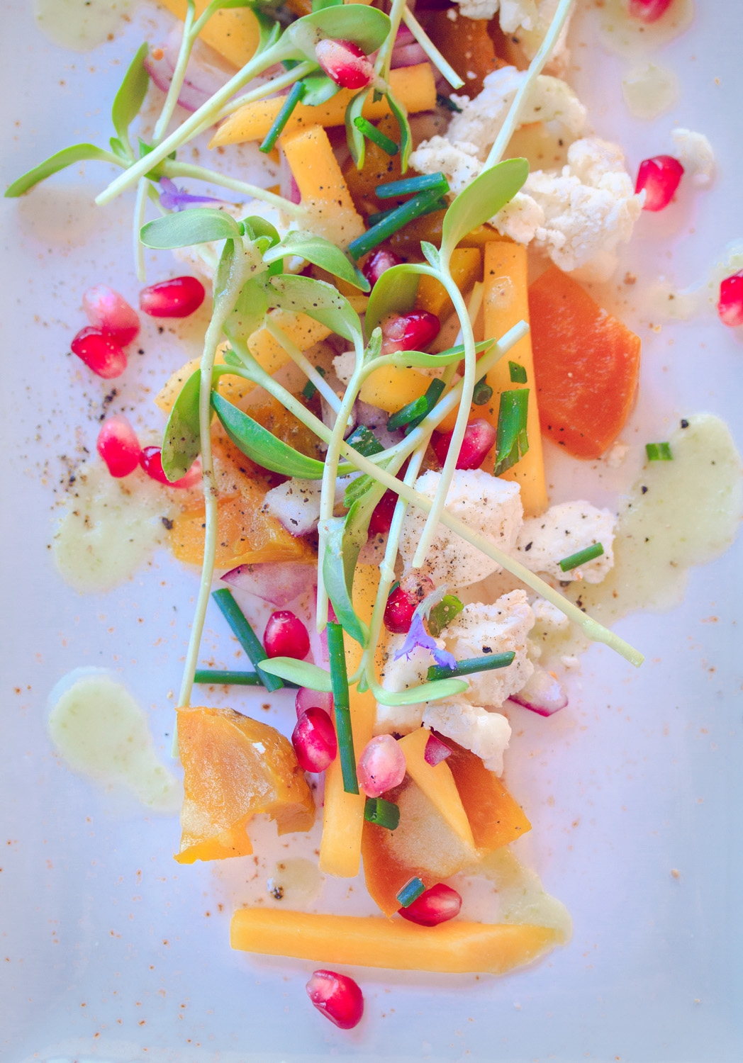A fresh vibrant salad prepared at Cello Restaurant