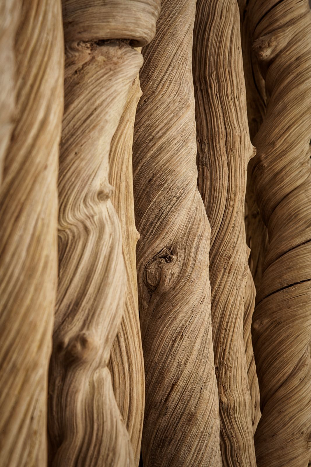 Close up to wooden texture