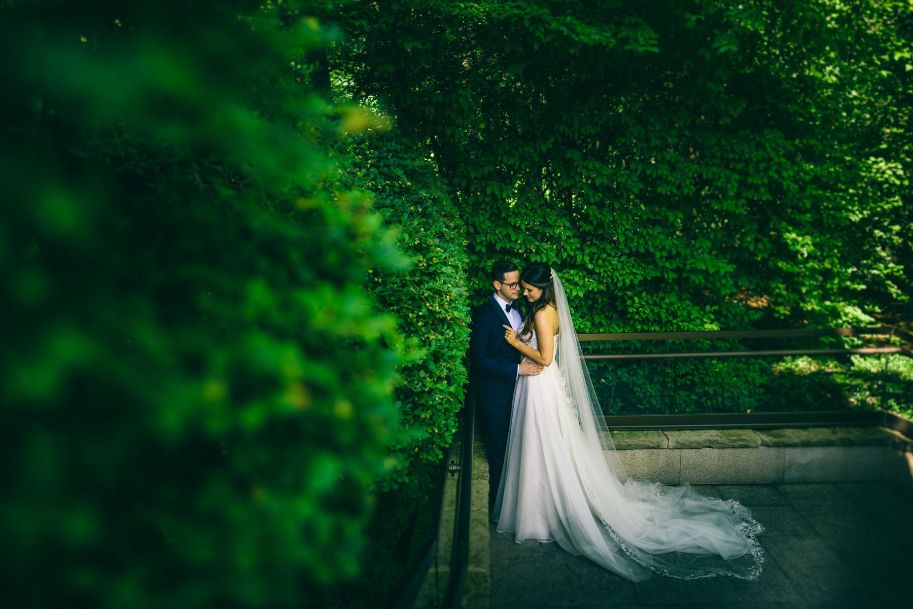 bride and groom hugging with green foliage
