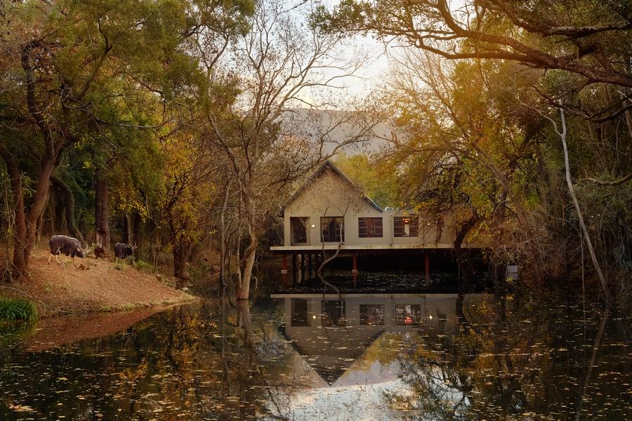 Magalies Park Property Wellness Spa