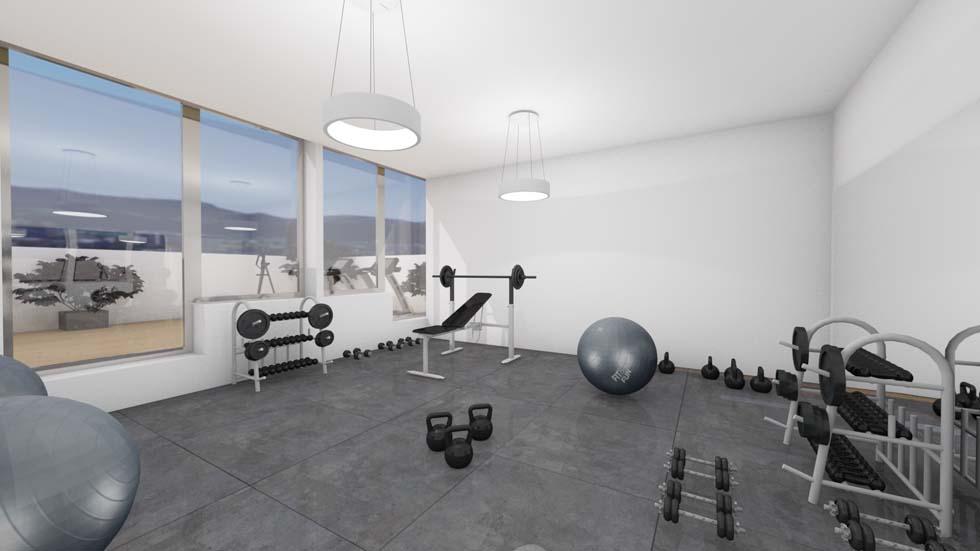 Gym at The Fuzzy Log in Ljubljana