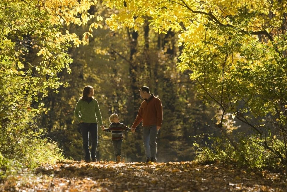 family walking a woodland trail