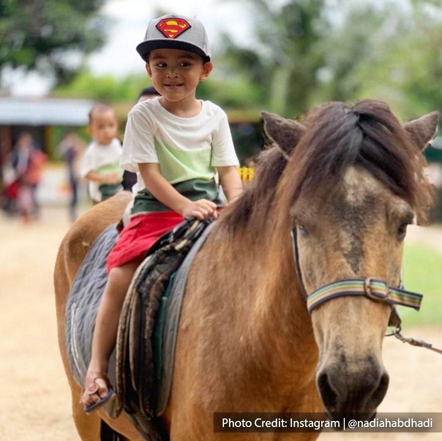 boy riding pony at pet shows farm port dickson