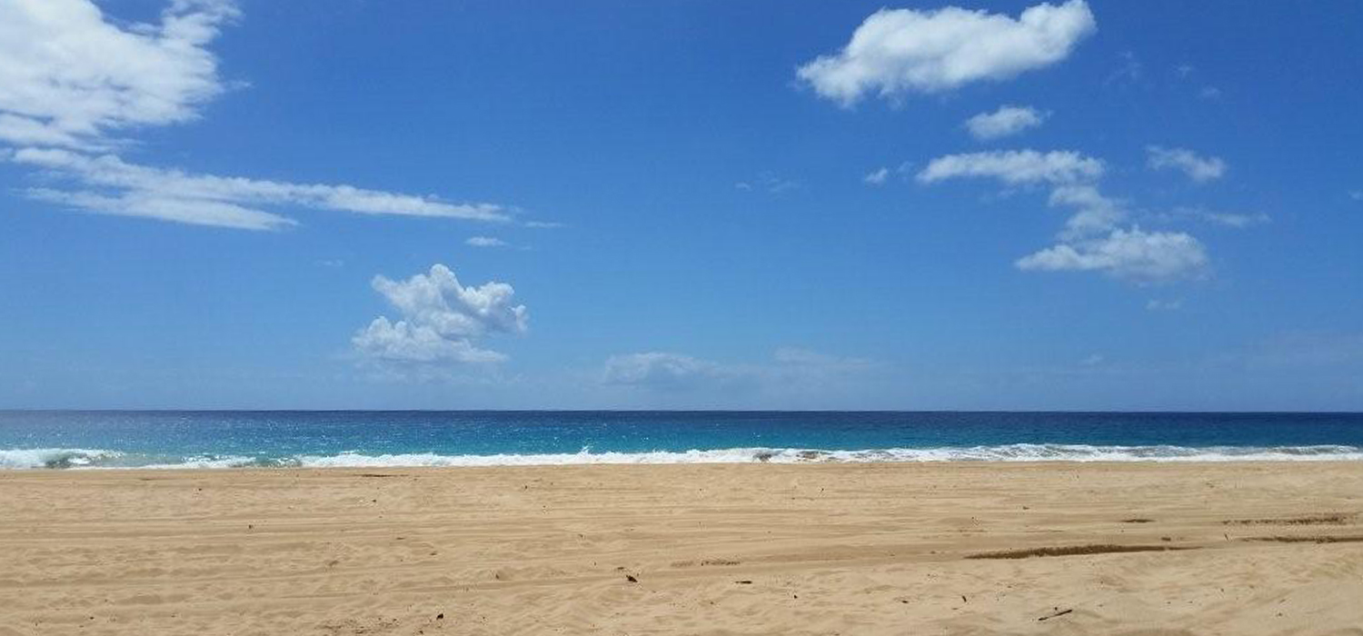 clear and sunny beach in kauai