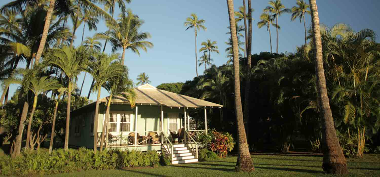 Waimea Plantation cottage tucked into the palm trees.