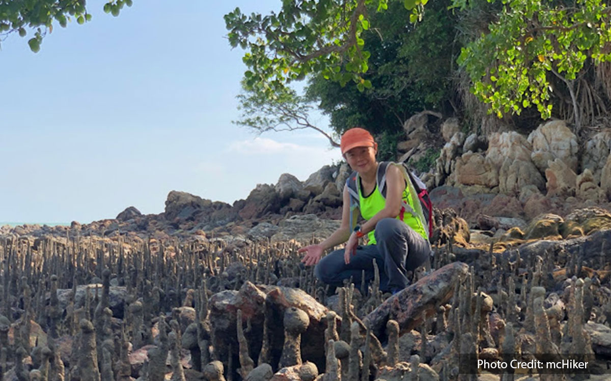 monkey bay hiking trail of port dickson