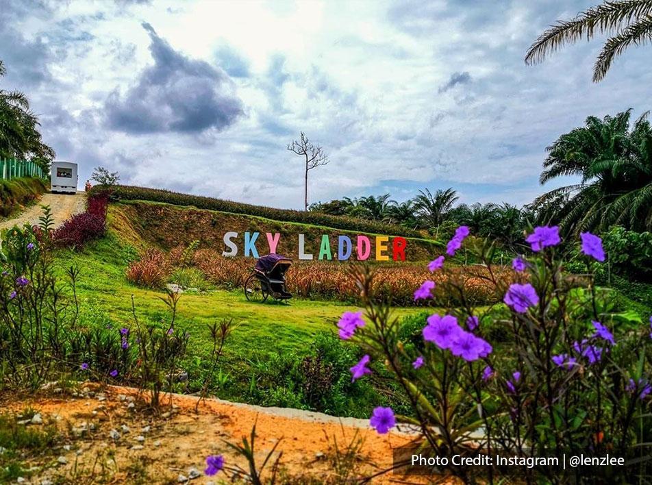 sky ladder pineapple farm port dickson