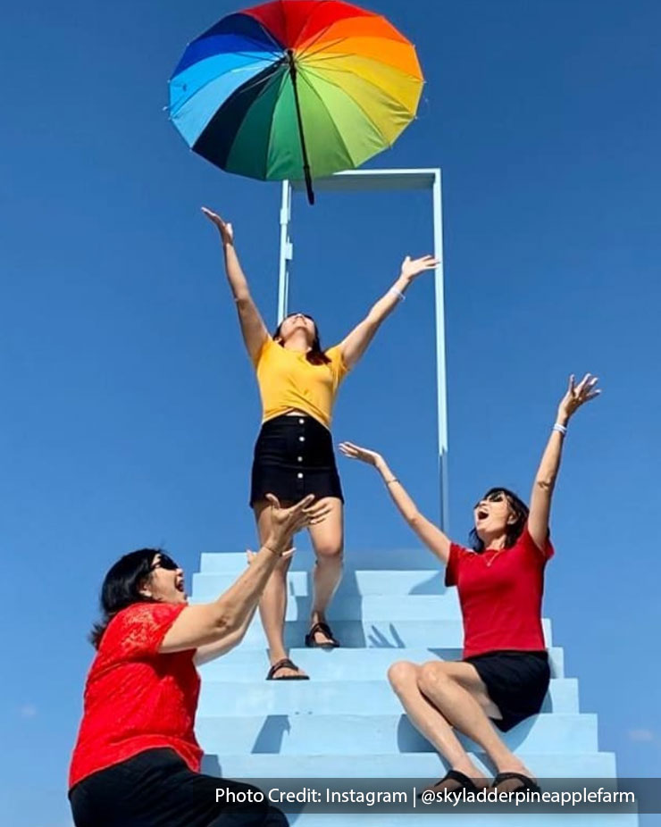 women sky ladder pineapple farm port dickson