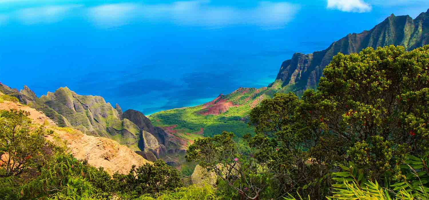 bluffs, beaches, corals, mountains, canyons, and rainforests