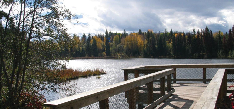 Shane Lake Prince George