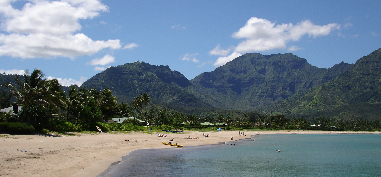 beach area in Kauai