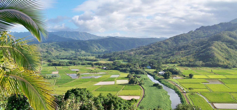 landscape view of kauai valleys