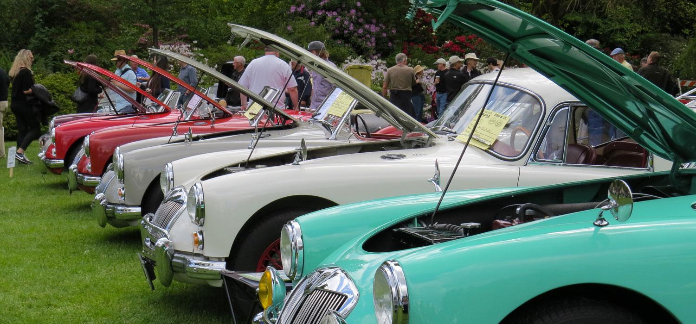 old British cars at show