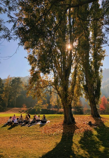 Group sitting in a park during Autumn