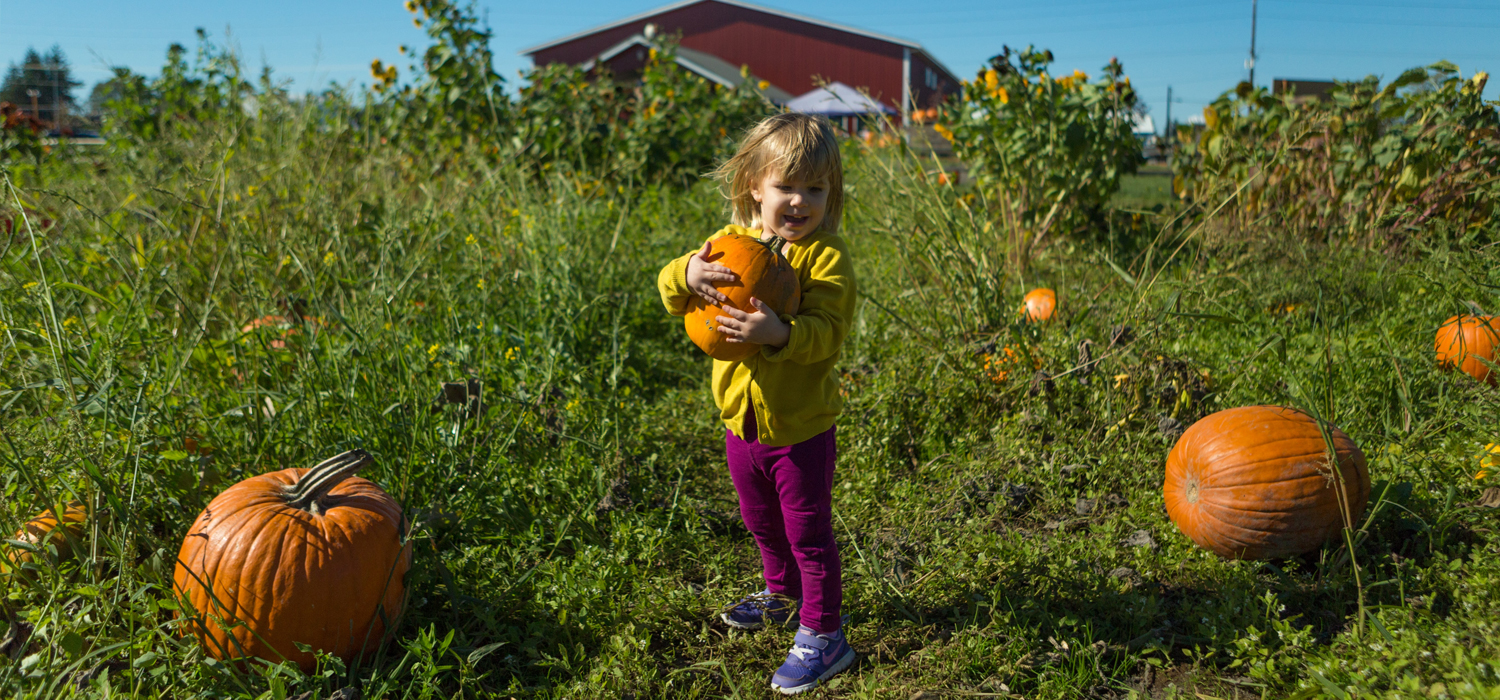 young girl picking her pumpkin