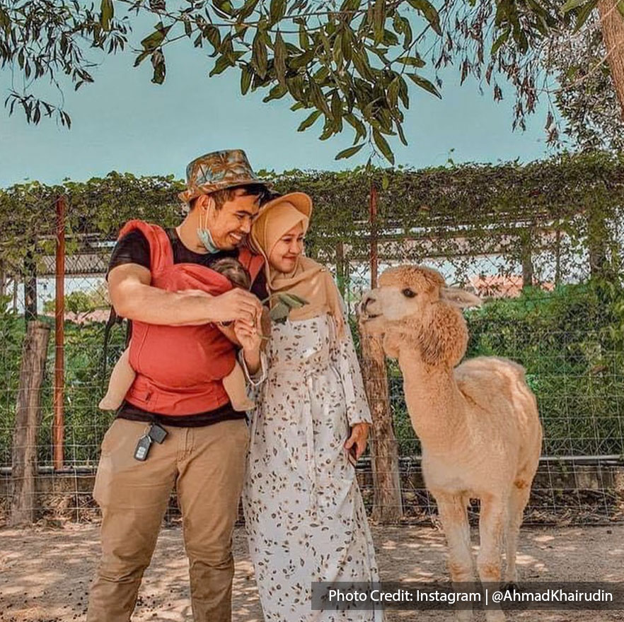 Family tourists with animal in family-friendly petting zoo