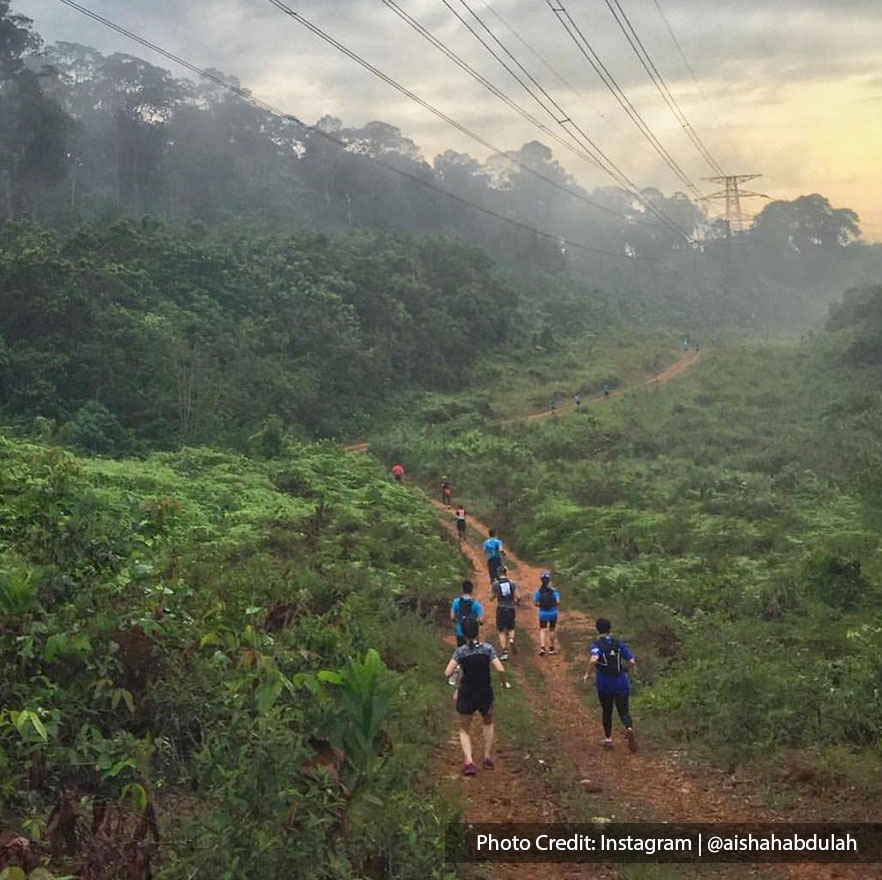 group of people jogging on forest trail