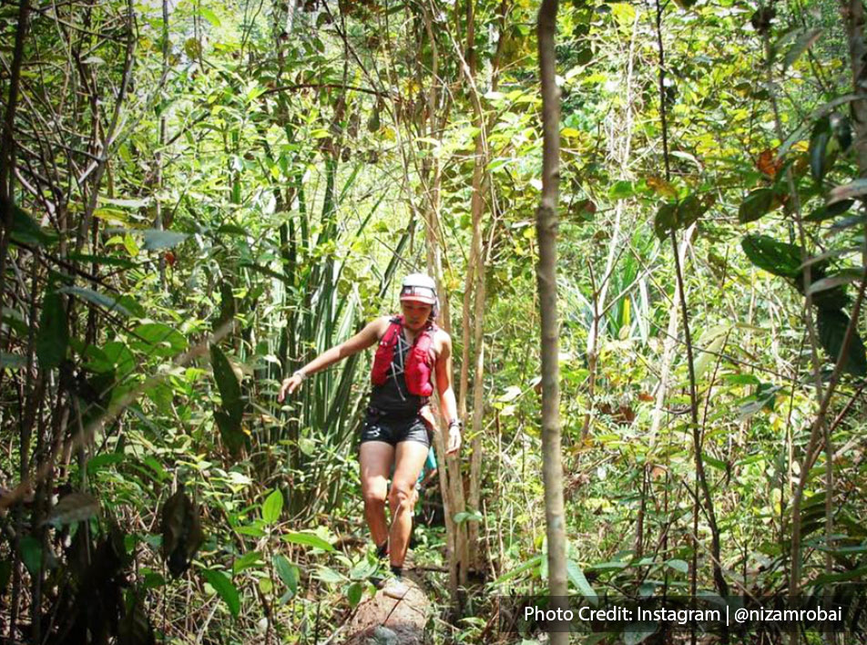 Jungle trekking in forest PD