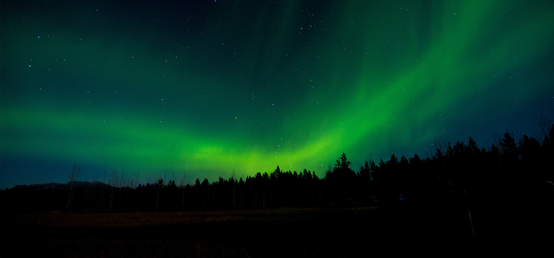 Northern Lights near Whitehorse