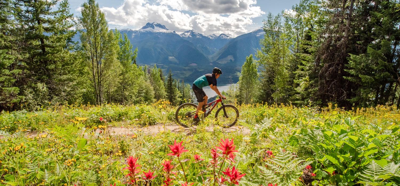 biking riding through flower fields