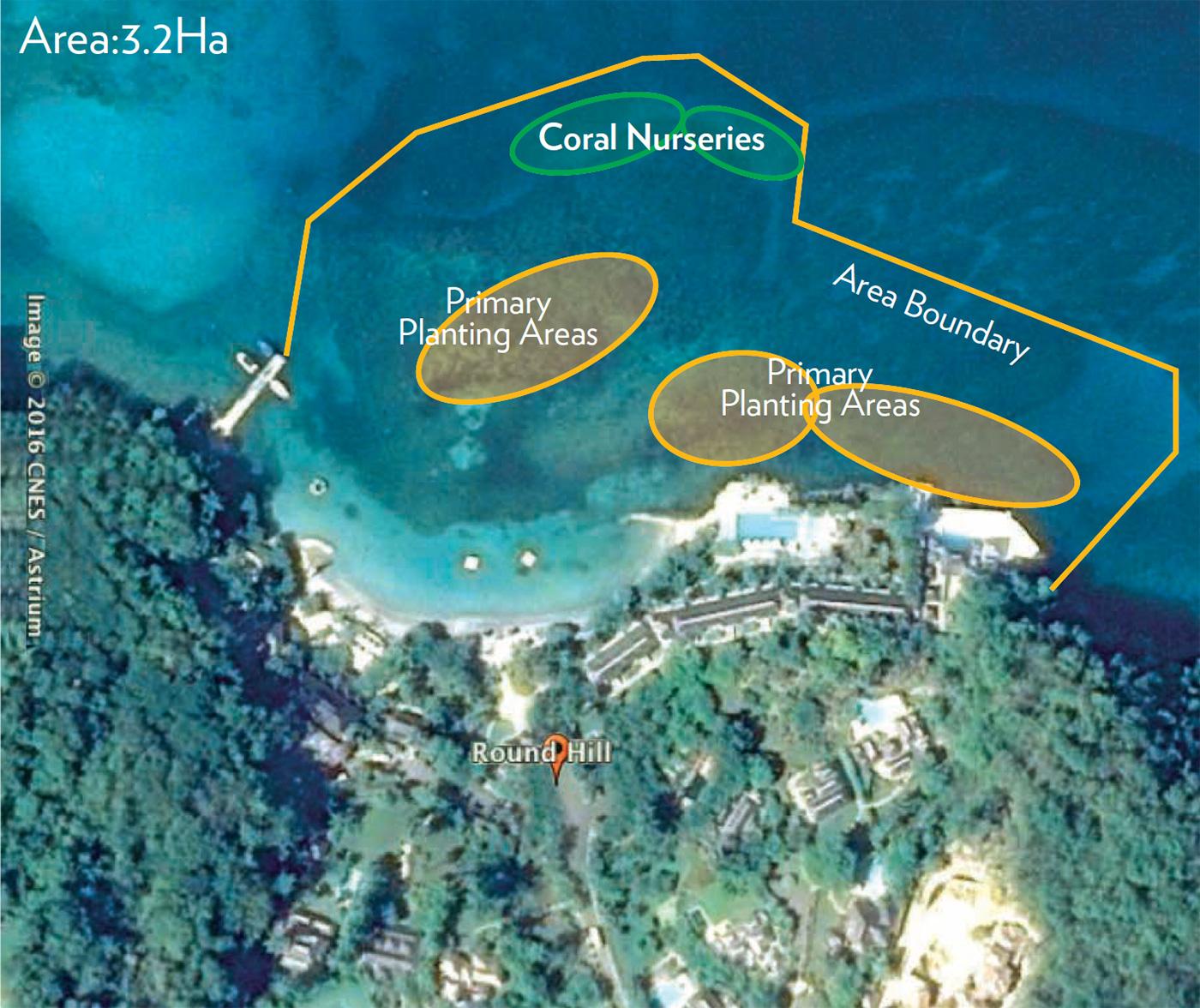 Round Hill Reef Gardens In Montego Bay Jamaica