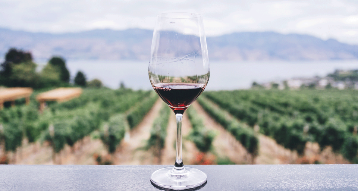 wine glass in front of okanagan lake
