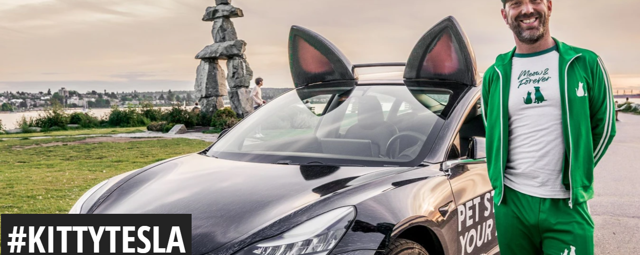 pet food delivery person standing next to Tesla with cat ears