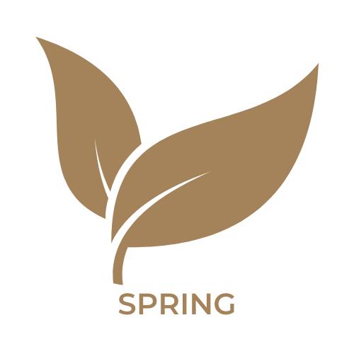 spring in boise