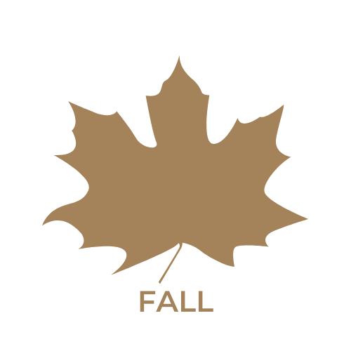 fall in downtown boise