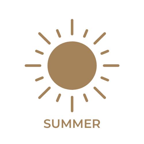 summer in boise idaho